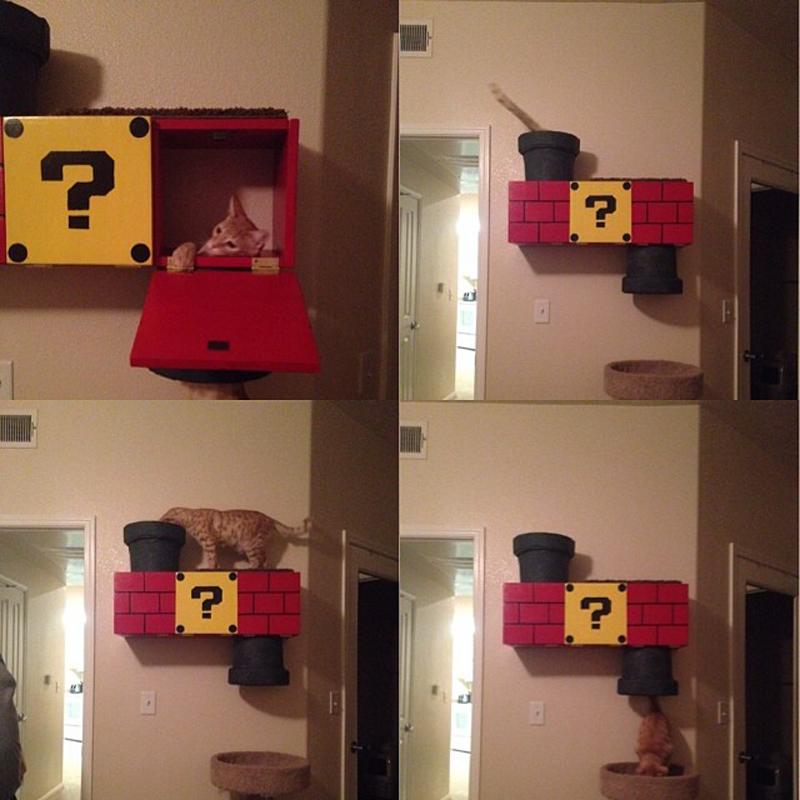 mario-bro-cat-climber-04