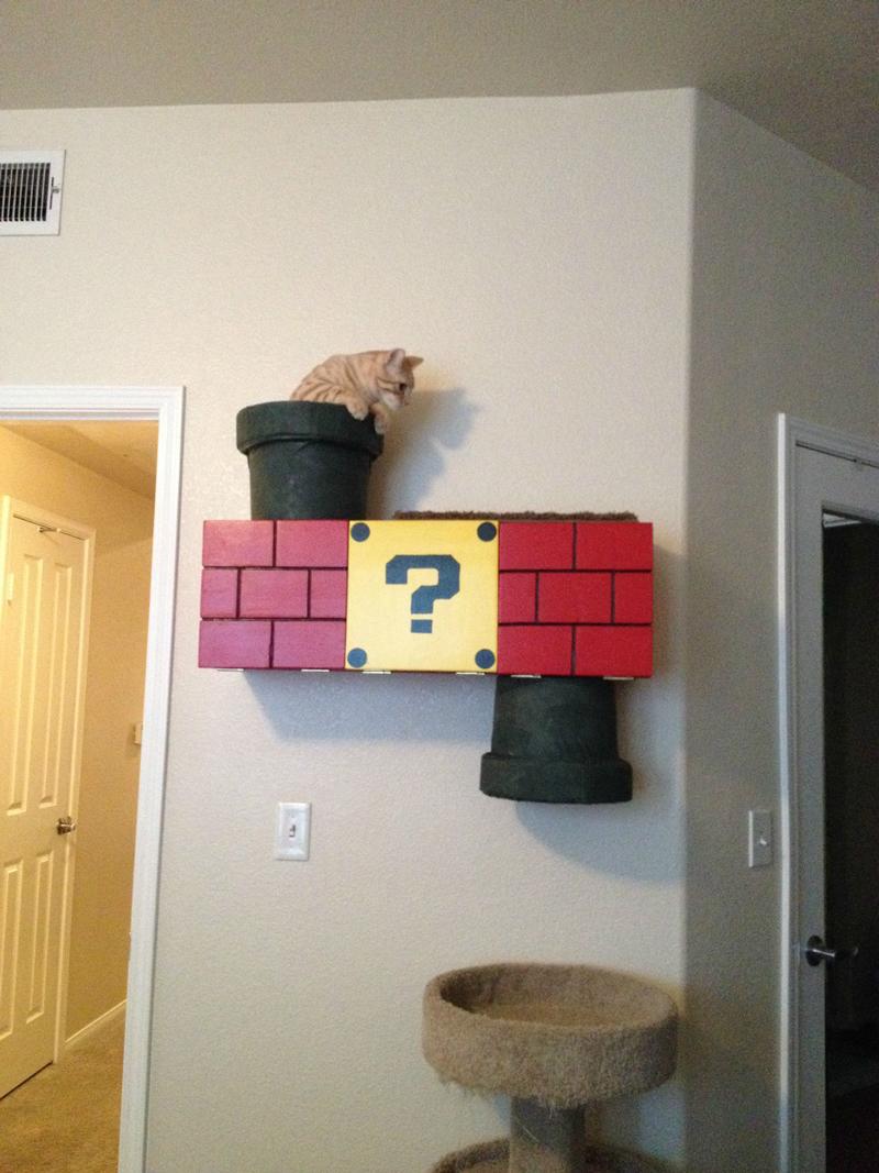 Mario Bro Cat Climber 05