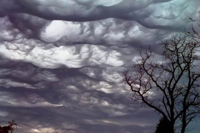 15 Impressive Natural Phenomena That Only  Very Few of Us Can See