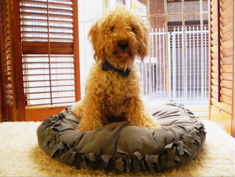 no-sew-pet-bed-02
