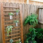 outdoor-succulent-wall-accent-fi