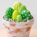painted-rock-cacti-fi-2