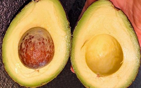 Perfectly Ripe Avocado Trick