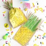 pineapple-favor-bags-fi