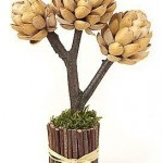 Pistachios Shell Tree