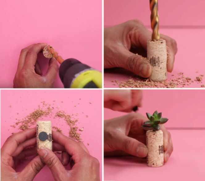 6 Gardening Tricks for People Who Want to Grow Plants but Don't Have a Garden