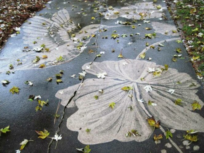 15 Unusual Images Created with … a Pressure Washer!