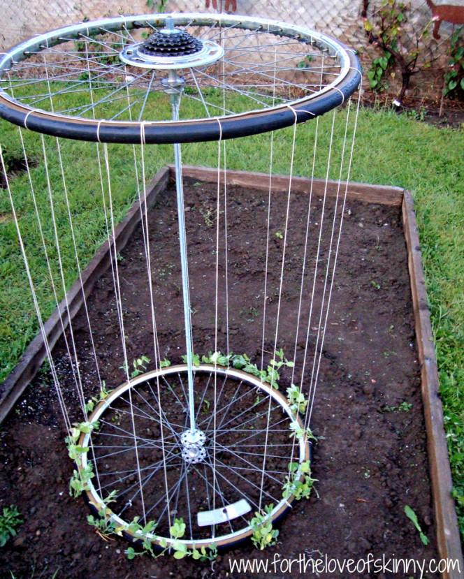 recycled-bike-wheel-garden-trellis-02