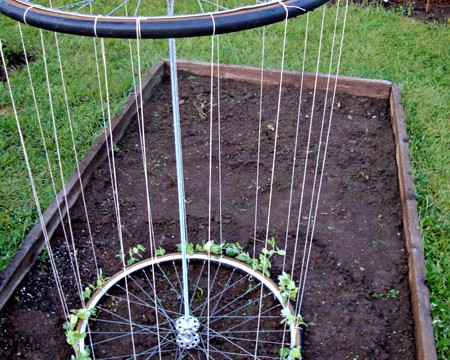 recycled-bike-wheel-garden-trellis-fi