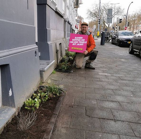 Flowers Instead of Sidewalk Bricks? This Is How Citizens of Rotterdam Create Small Gardens along Their Houses