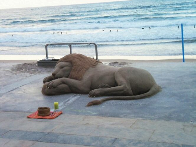 Summertime Works of Art. 24 Sand Sculptures Looking Just like Real Animals!