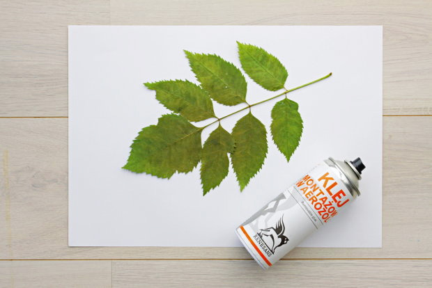 Silhouette Botanical Canvas 03