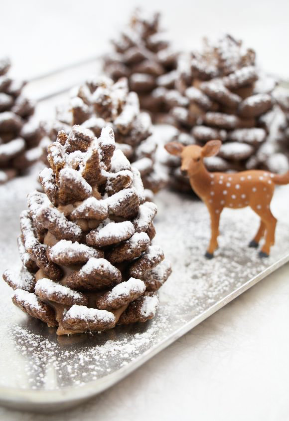 snowy-chocolate-pinecones-fi