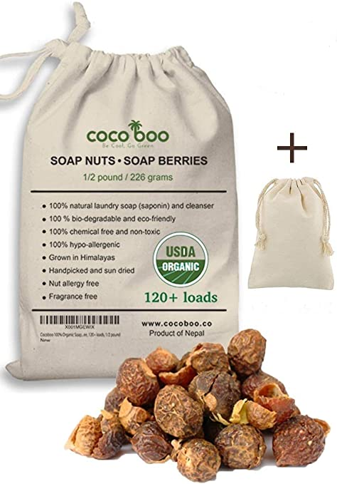 Soap Nuts as a Natural Detergent.  Put Them into the Washing Machine or the Dishwasher