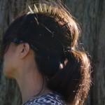 spike-comb-fi