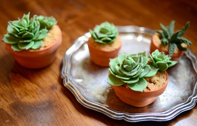 succulent-cupcakes-04