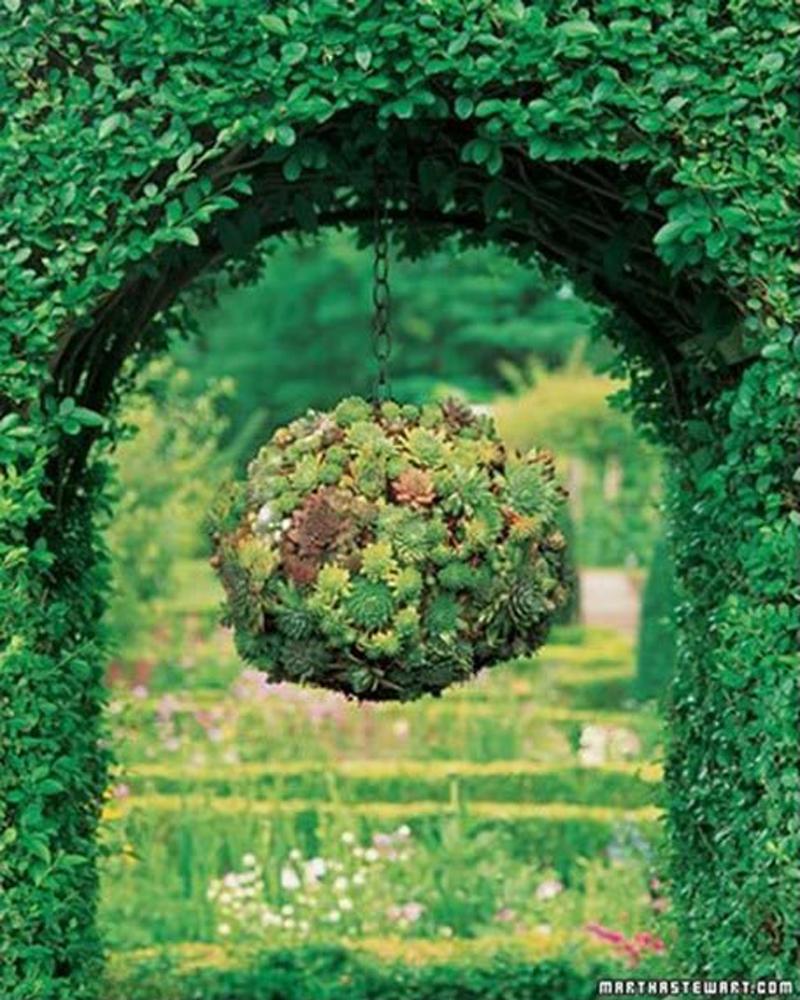 succulent-kissing-ball-04