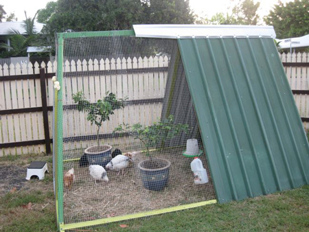 swing-frame-chicken-coop-fi