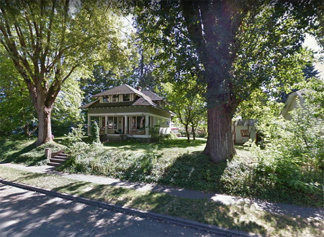 A Woman Turns a 110-Year-Old Tree Trunk Into a Free Library. Her Neighbors Are Delighted