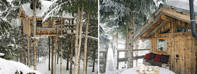 treehouse-to-live-in-collage