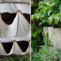 vertical-vegetable-garden-fb