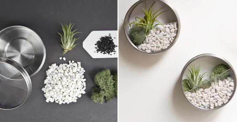 How To Make Wall Succulent Terrarium Craftspiration
