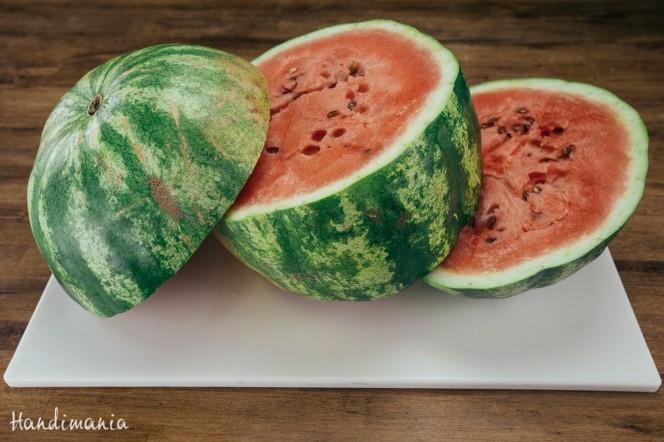 watermelon-sticks-03-b