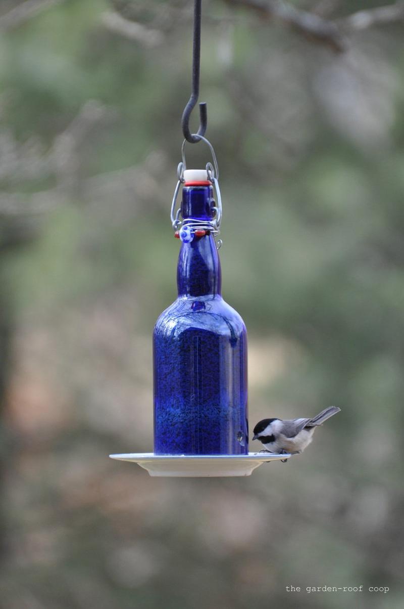 wine-bottle-bird-feeder-03