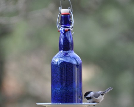 wine-bottle-bird-feeder-fi