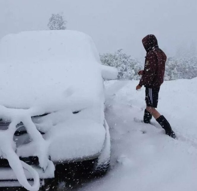 20 Winter Photos to Make You Instantly Miss the Summer. Sometimes Snowfall Is Nothing but a Disaster