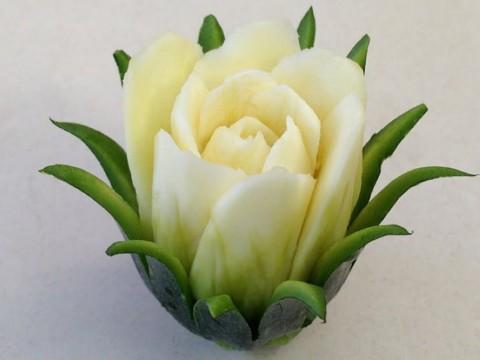 zucchini-rose-flower.01